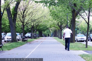 EASTERN PARKWAY, BKLYN | MAY 2013