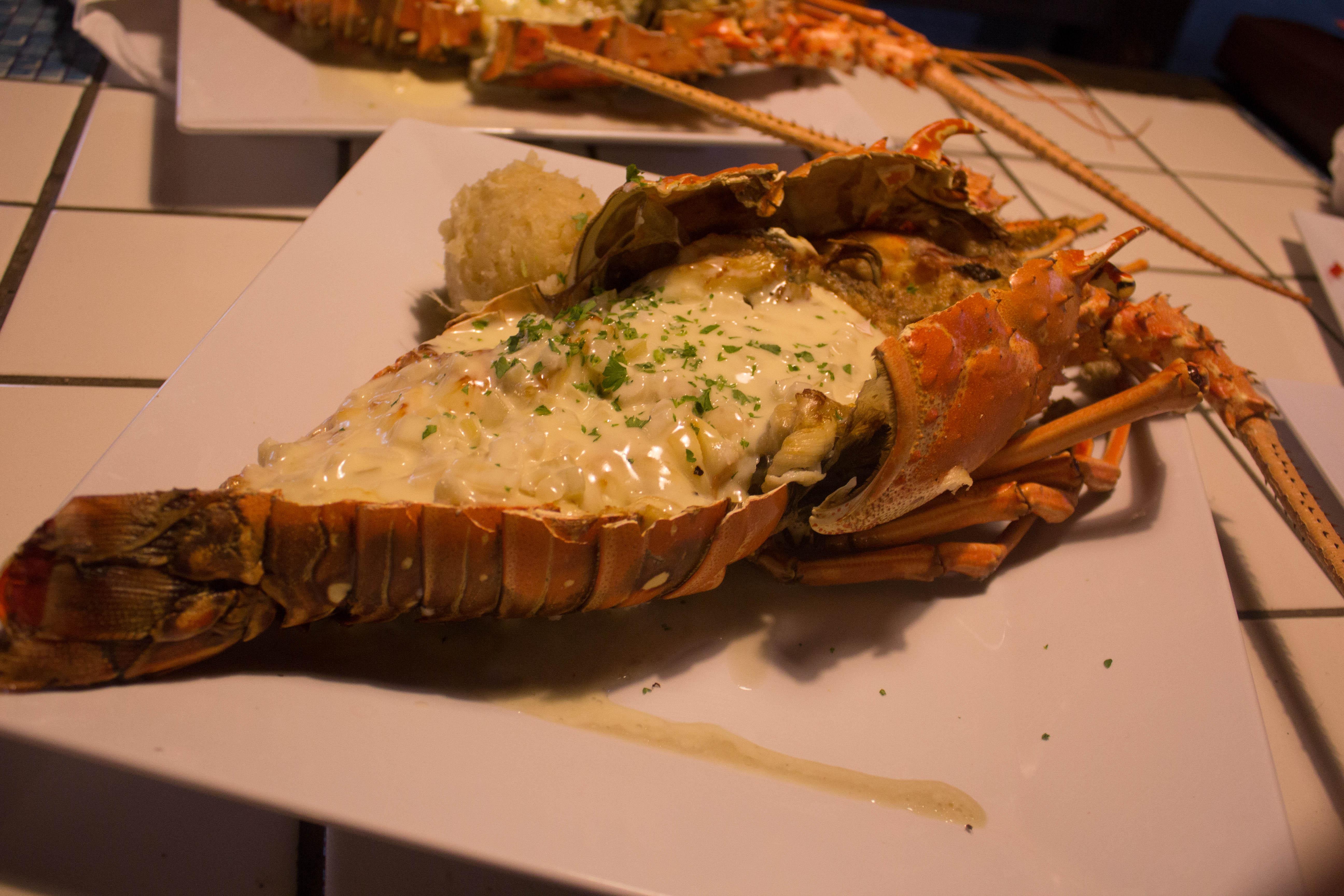 Spiny Lobster :: Soleil Beachclub